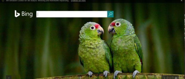 Bing Suchmaschine